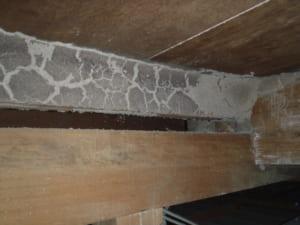空き家の白蟻被害(天井裏)