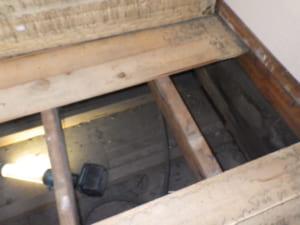 福岡県北九州市戸畑区でのシロアリ駆除調査写真3