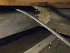 福岡県北九州市戸畑区での羽アリ駆除調査Y邸のシロアリ調査写真4