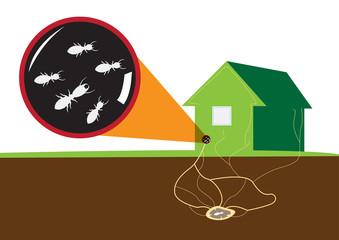 羽アリ駆除の為の原因