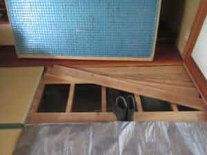 和室から羽蟻調査