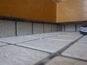 玄関の羽アリの調べ方