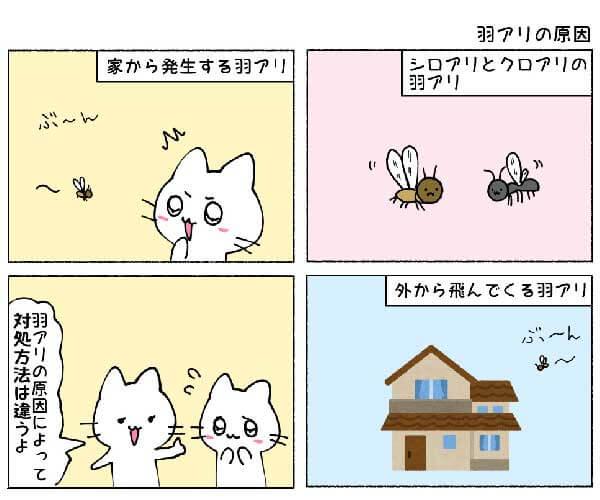 羽アリの原因