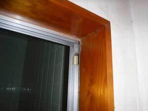 風呂場から羽アリが発生