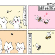 羽アリの正体